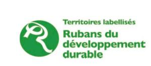 logo_palmares_RDD