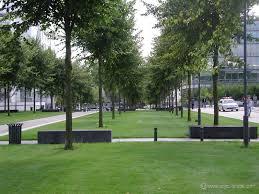 Angers ville verte Ecolobordeauxblog