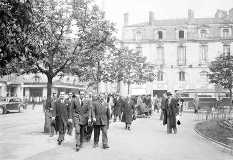 marronniers place Gambetta