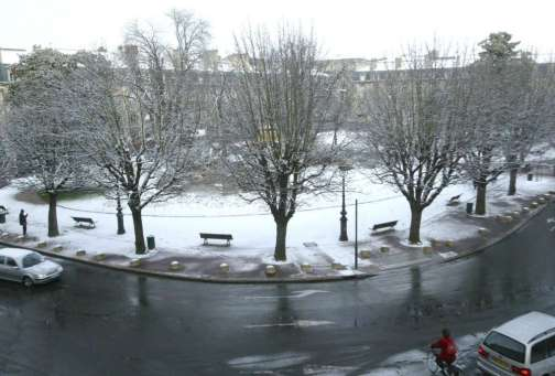 Place Gambetta marronniers