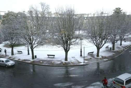 Place Gambetta marronniers