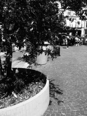Place Camille Jullian