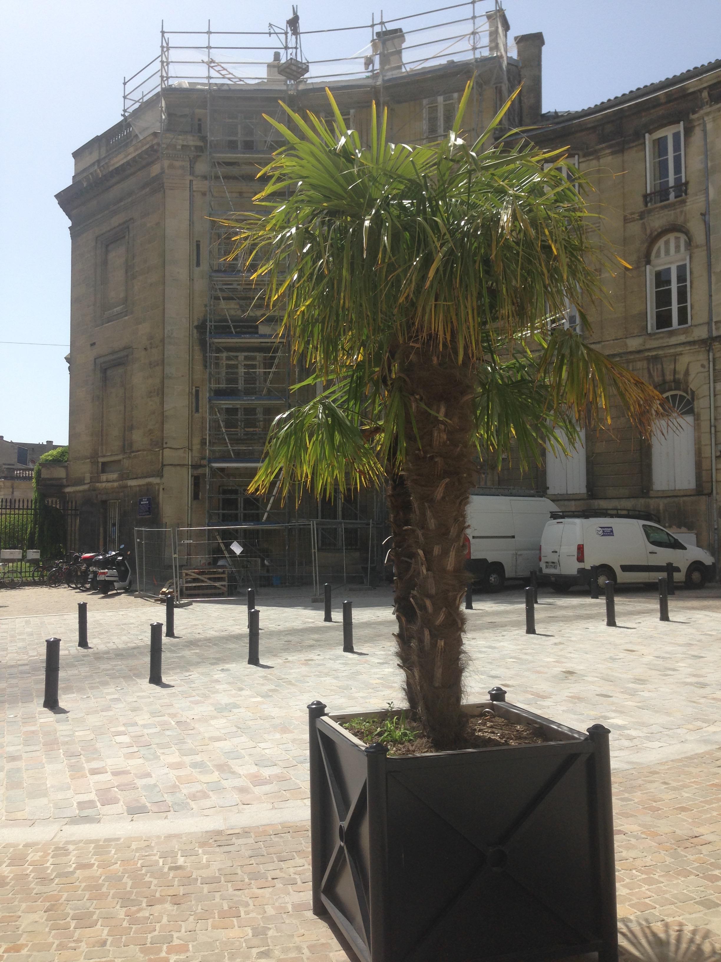 Place Bardineau Bx